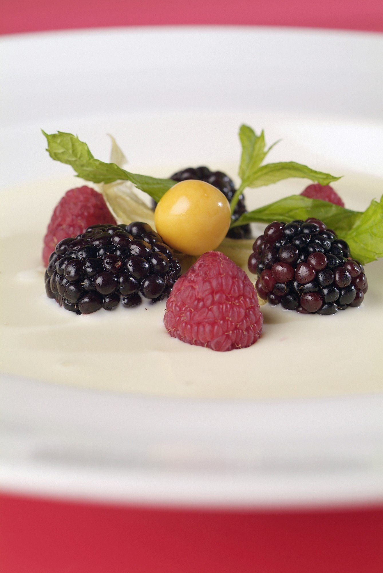food|FOOD|Dishes|Fruit|Chocolate|Dessert|Mint,