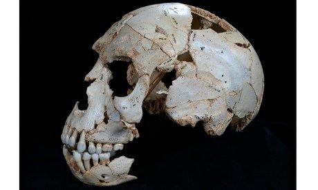 Neanderthal skull from the Sima de los Huesos cave in Sierra de Atapuerca, Spain