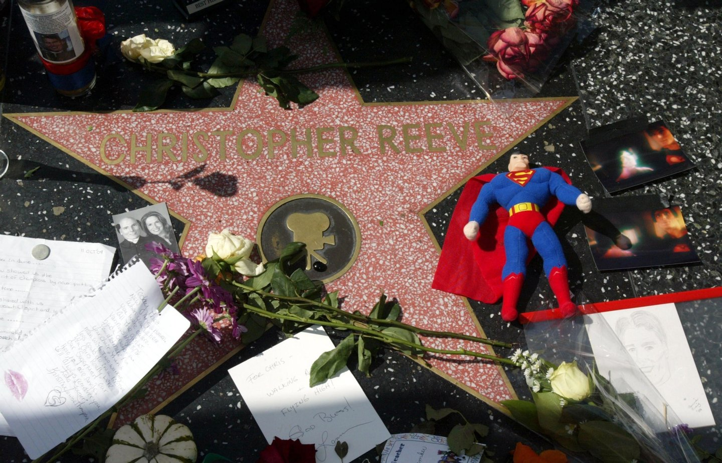 HOLLYWOOD, CA - OCTOBER 11:  Flowers and memorbilla are seen on Christopher Reeve's star at the Hollywood Walk of Fame on October 11, 2004 in Hollywood, California. Reeve died of heart failure on October 10.  (Photo by Frazer Harrison/Getty Images)