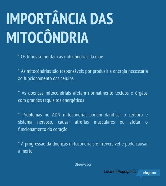 importancia_das_mitocondria