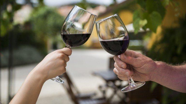 vinho, vinha, uva, adega, sant'ana,