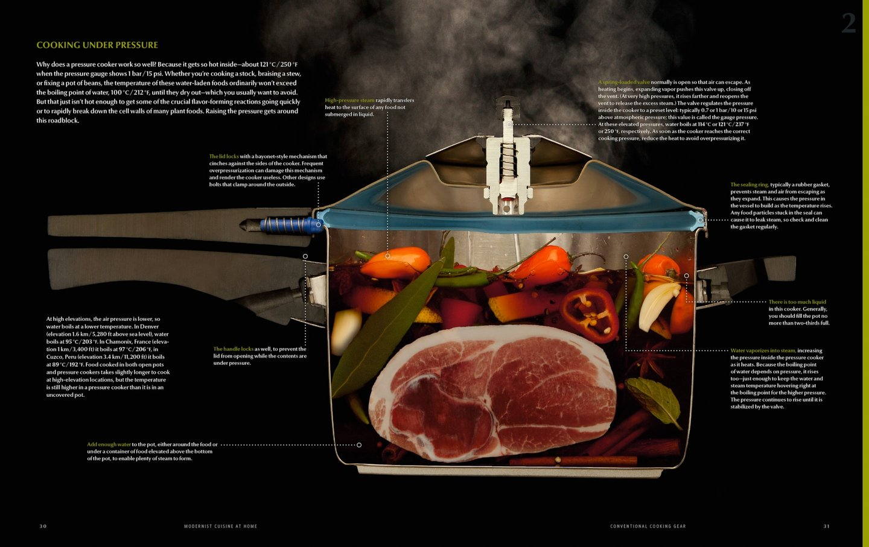 Pressure Cooker Cutaway