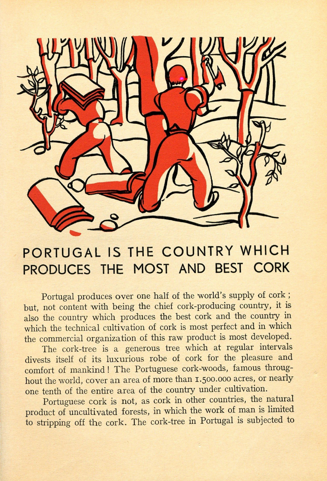 AF Cortiça 1939