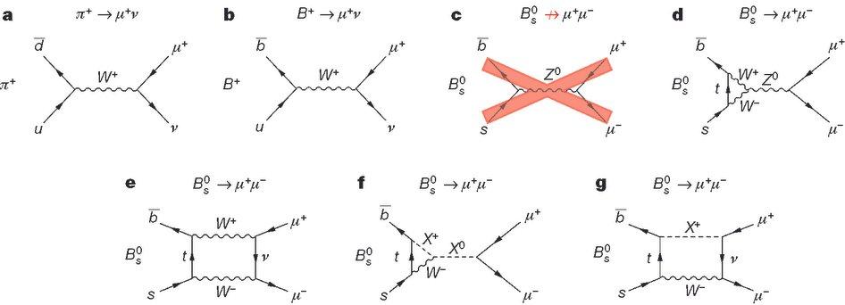 Diagramas com decaimentos possíveis para o mesão B (lado esquerdo) em muões (lado direito). c) é o diagrama mais simplificado, mas impossível no modelo-padrão; e) diagrama compatível com modelo-padrão; f) e g) diagramas compatíveis  com a nova física - CMS&LHCb (2015) Nature