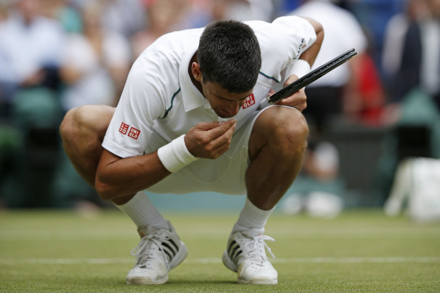 Serbia's Novak Djokovic celebrates beating Switzerland's Roger Federer by eating a blade of grass after their men's singles final match on Centre Court on day thirteen of the 2015 Wimbledon Championships at The All England Tennis Club in Wimbledon, southwest London, on July 12, 2015. Djokovic won the match 7-6, 6-7, 6-4, 6-3. RESTRICTED TO EDITORIAL USE  --  AFP PHOTO / ADRIAN DENNIS        (Photo credit should read ADRIAN DENNIS/AFP/Getty Images)