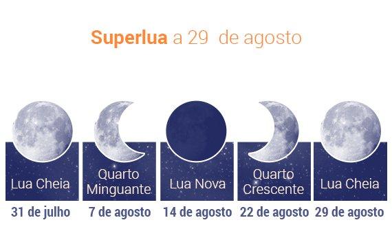 @ Andreia Reisinho Costa