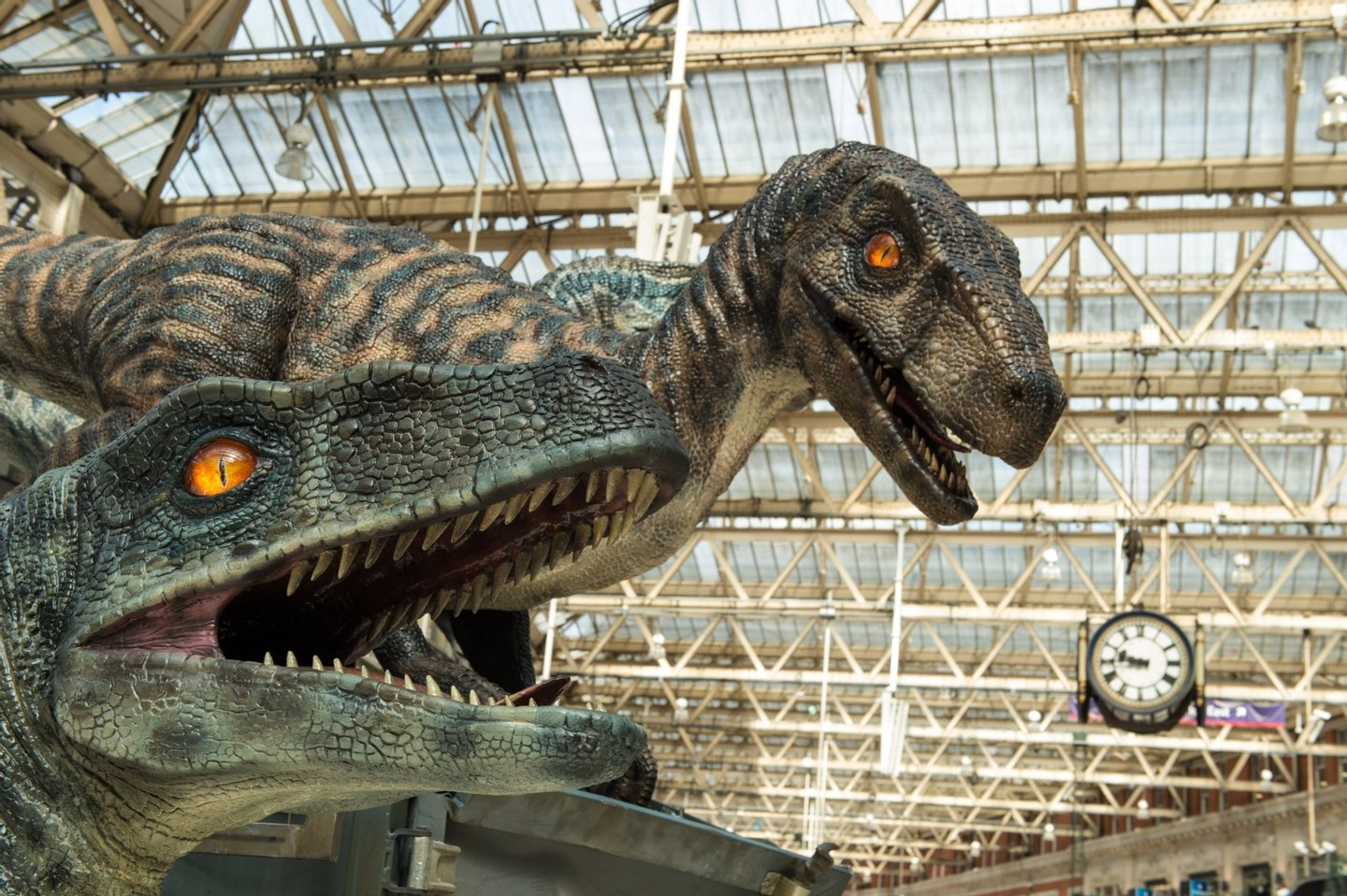 LONDON, ENGLAND - JUNE 08:  A general view of the dinosaurs during the 'Jurassic World' take over at Waterloo Station on June 8, 2015 in London, England.  (Photo by Ian Gavan/Getty Images)