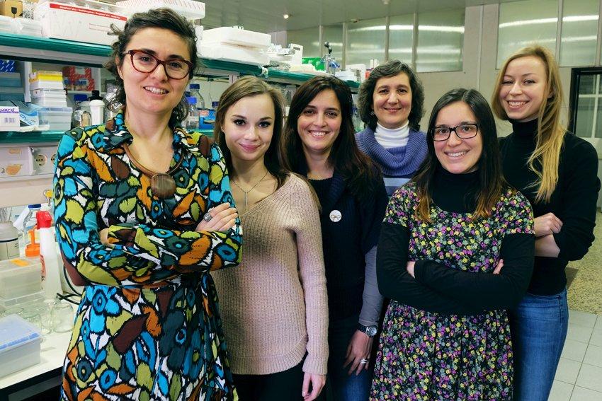 A equipa de Ana Domingos no Instituto Gulbenkian de Ciência - Catarina Júlio/IGC