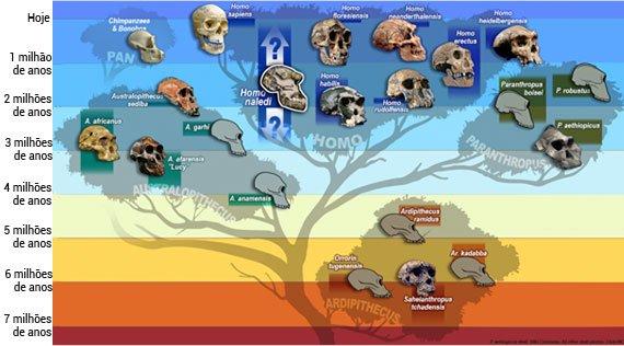 arvoe_genealogica