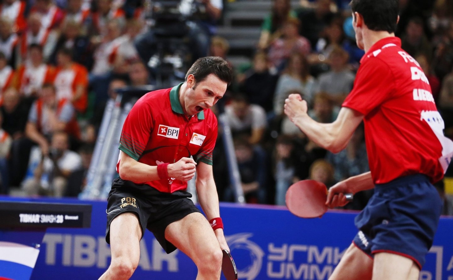 epa04962919 Stefan Fegerl (R) of Austria and Joao Monteiro (L) of Portugal celebrate a point against Robert Gardos and Daniel Habesohn of Austria during their men's doubles final match of the Table Tennis European Championships in Ekaterinburg, Russia, 04 October 2015. EPA/SERGEI ILNITSKY