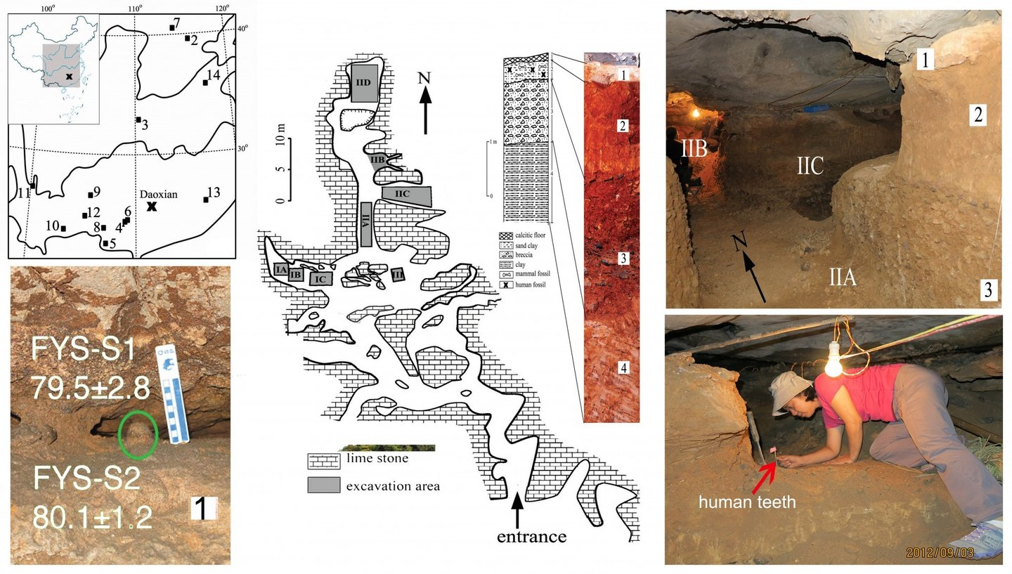 Geographical location and interior views of the Fuyan Cave, Doaxian with dating sample (lower left), plan view of the excavation area with stratigraphy layer marked (center), the spatial relationship of the excavated regions and researcher finding human tooth (right). Y-J Cai, X-X Yang, and X-J Wu