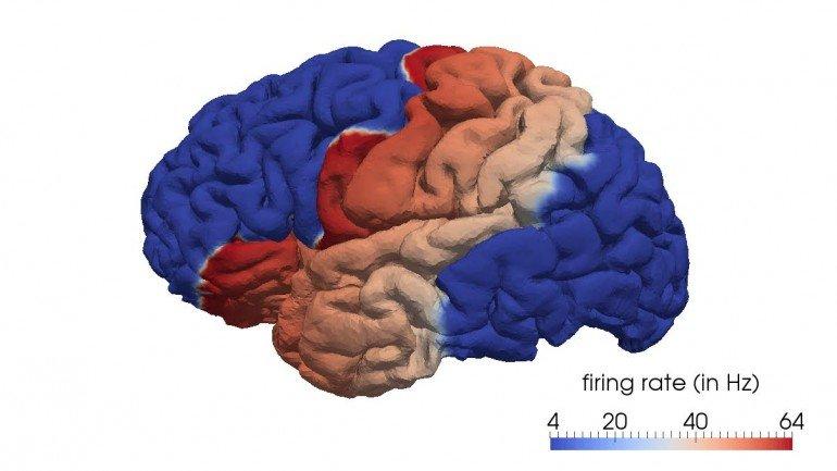 Modelo da geometria cerebral reconstruída a partir de uma ressonância magnética - BCAM/www.bcamath.org