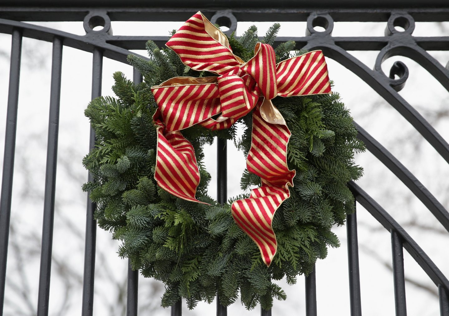 WASHINGTON, DC - DECEMBER 04: A Christmas wreath is hung on a gate of the White House December 4, 2013 in Washington, DC. U.S. first lady Michelle Obama will host today military families for the first viewing of the 2013 holiday decorations and demonstrating holiday crafts and treats to military children. (Photo by Alex Wong/Getty Images)