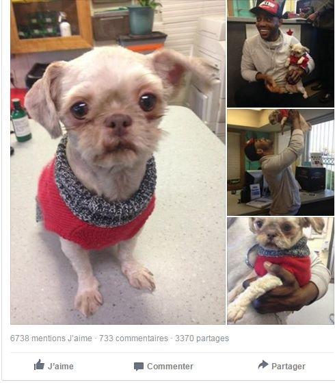 homem encontra cão dois anos depois