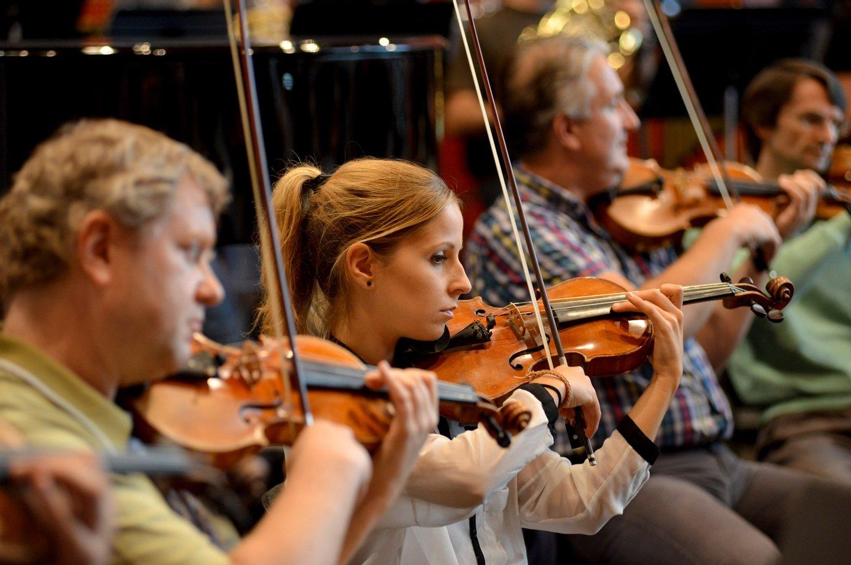 M sica cl ssica os concertos para ver em 2016 observador for Casa discografica musica classica