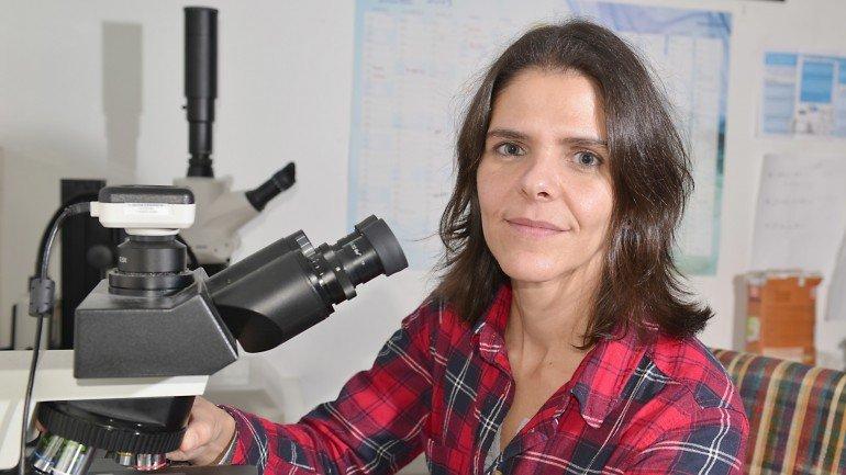 Ana Faria, MARE, ISPA - Instituto Universitário de Ciências Psicológicas, Sociais e da Vida - L'Oréal Portugal