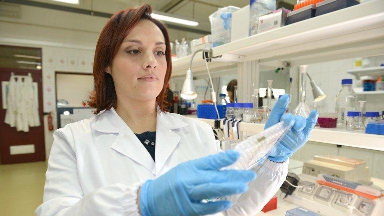 Elisabete Oliveira, Requimte, Faculdade de Ciências e Tecnologia, Universidade Nova de Lisboa - L'Oréal Portugal