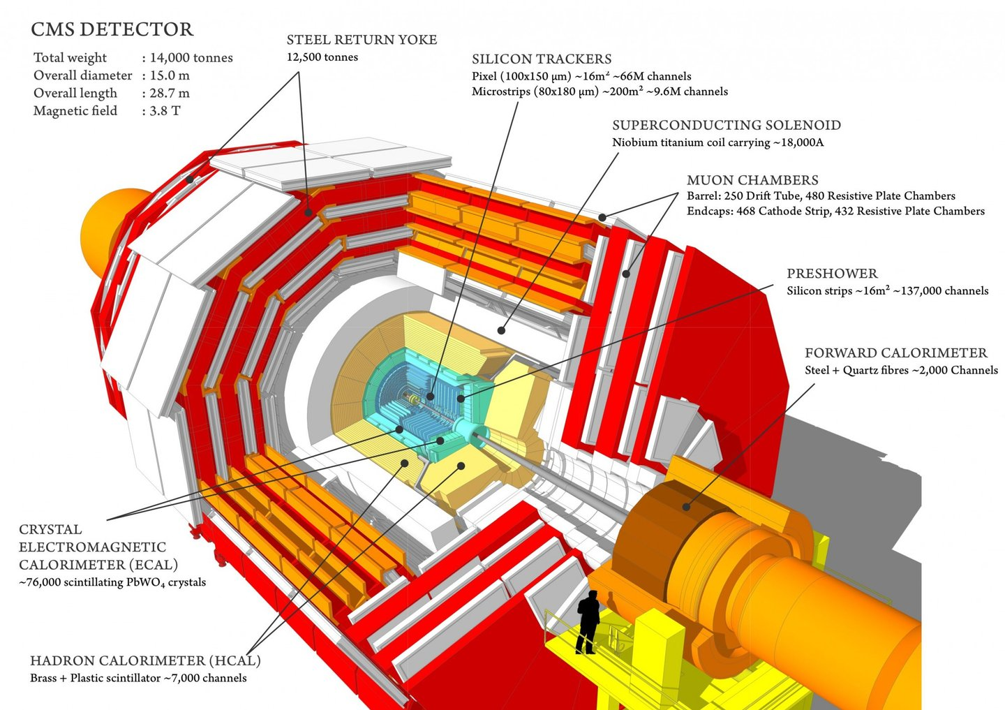 Sectional view of the CMS detector. The LHC beams travel in opposite directions along the central axis of the CMS cylinder colliding in the middle of the CMS detector.