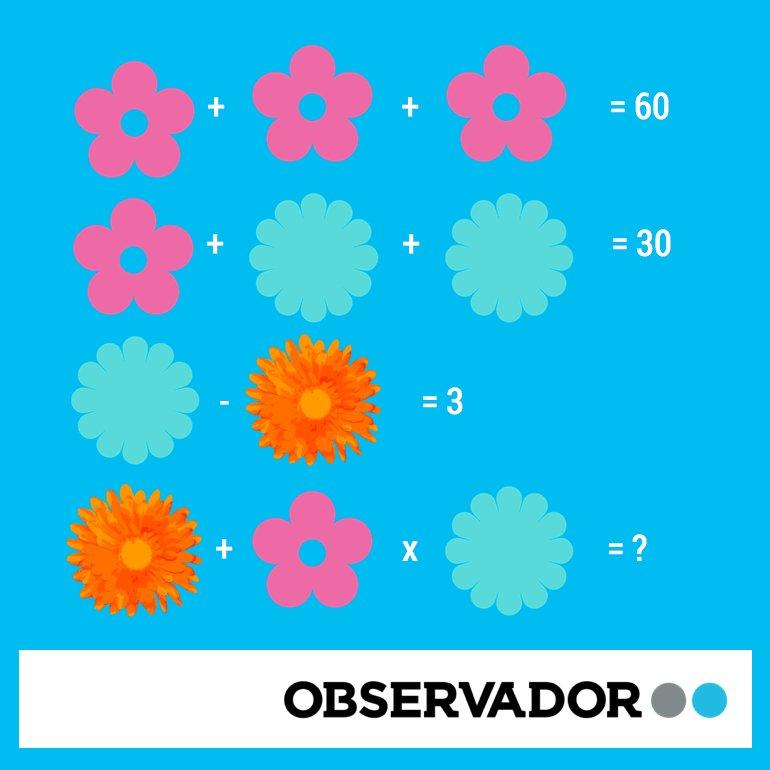 770_observador_flores