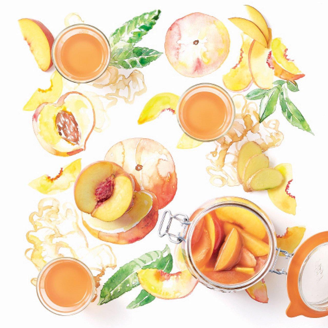 cocktails_Cocktail-de-Rum-Pêssego-Gengibre_51