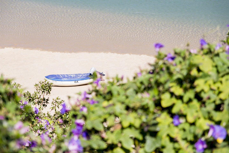praia, odeceixe, roteiro algarve, algarve, praia de odeceixe, praias, água, costa vicentina, barco, barco a motor, areia