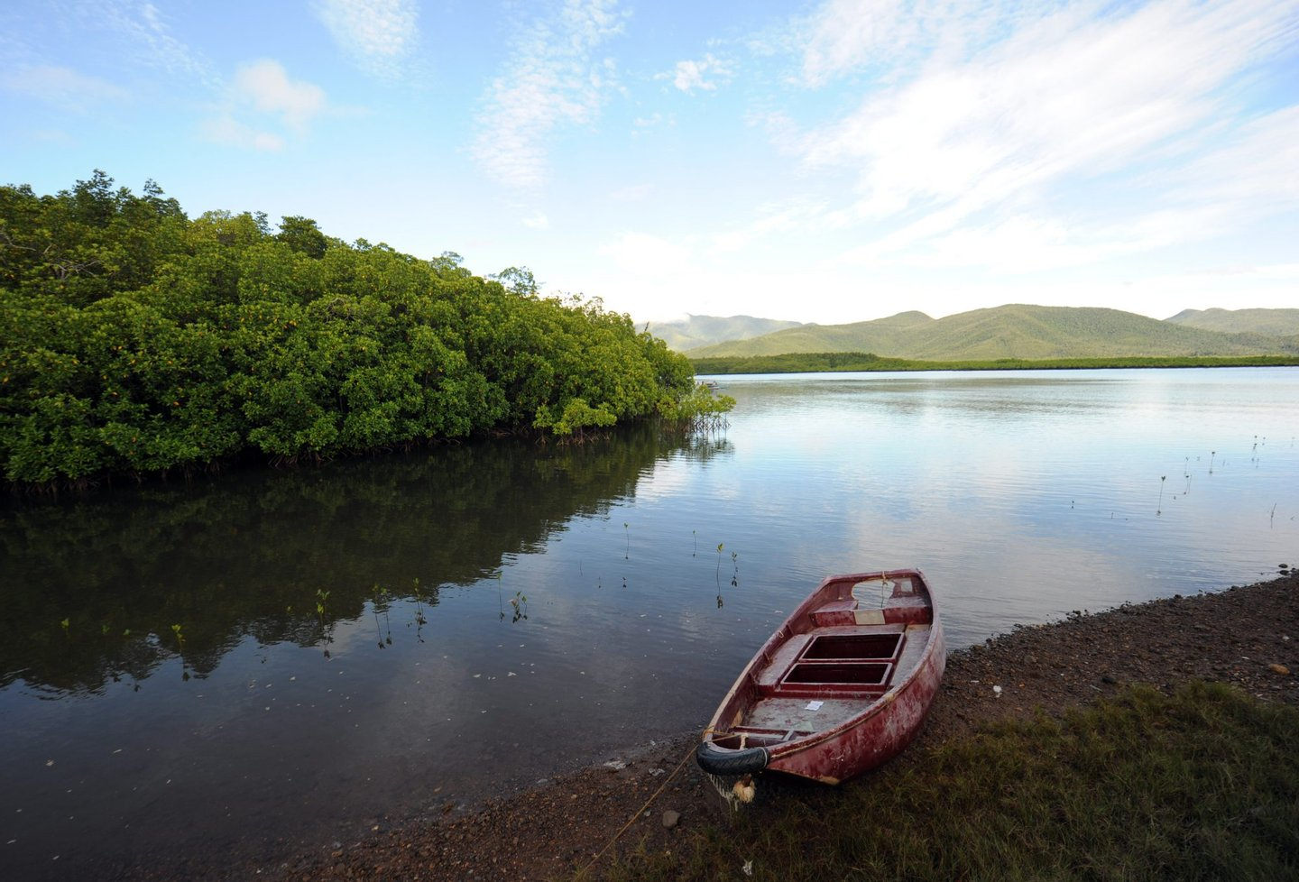 A boat sits anchored next to mangrove trees at Ulugan Bay in Puerto Princesa, Palawan island, south of Manila on April 25, 2012. AFP PHOTO/TED ALJIBE (Photo credit should read TED ALJIBE/AFP/GettyImages)