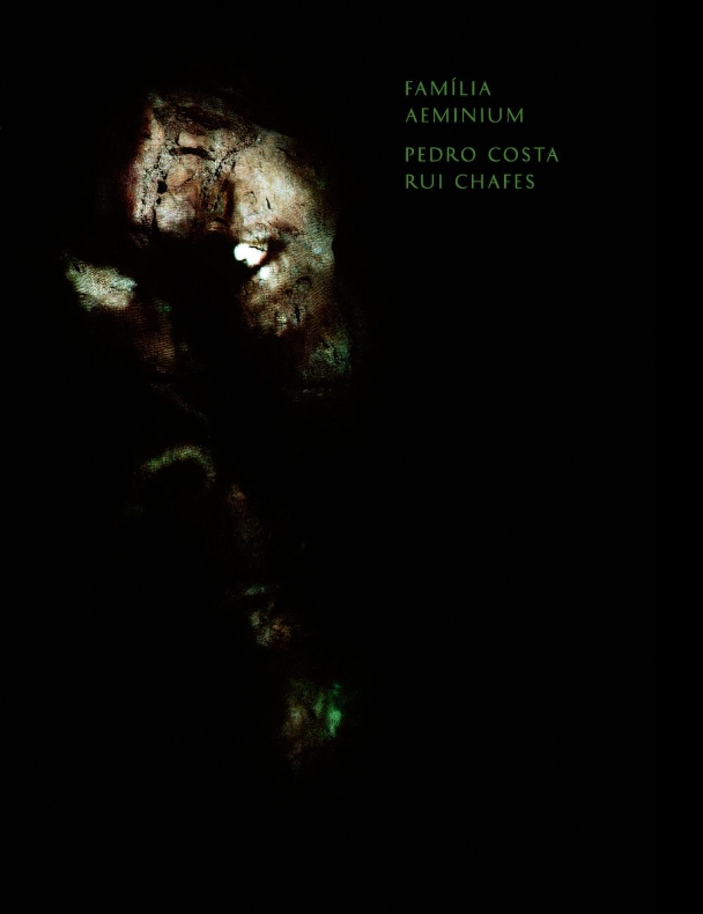 Família Aeminium' de Pedro Costa, Rui Chafes e poema de João Miguel Fernandes Jorge, pela chancela Pierre Von Kleist Editions