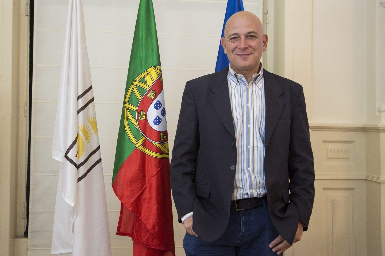 Harry mitsidis portugal