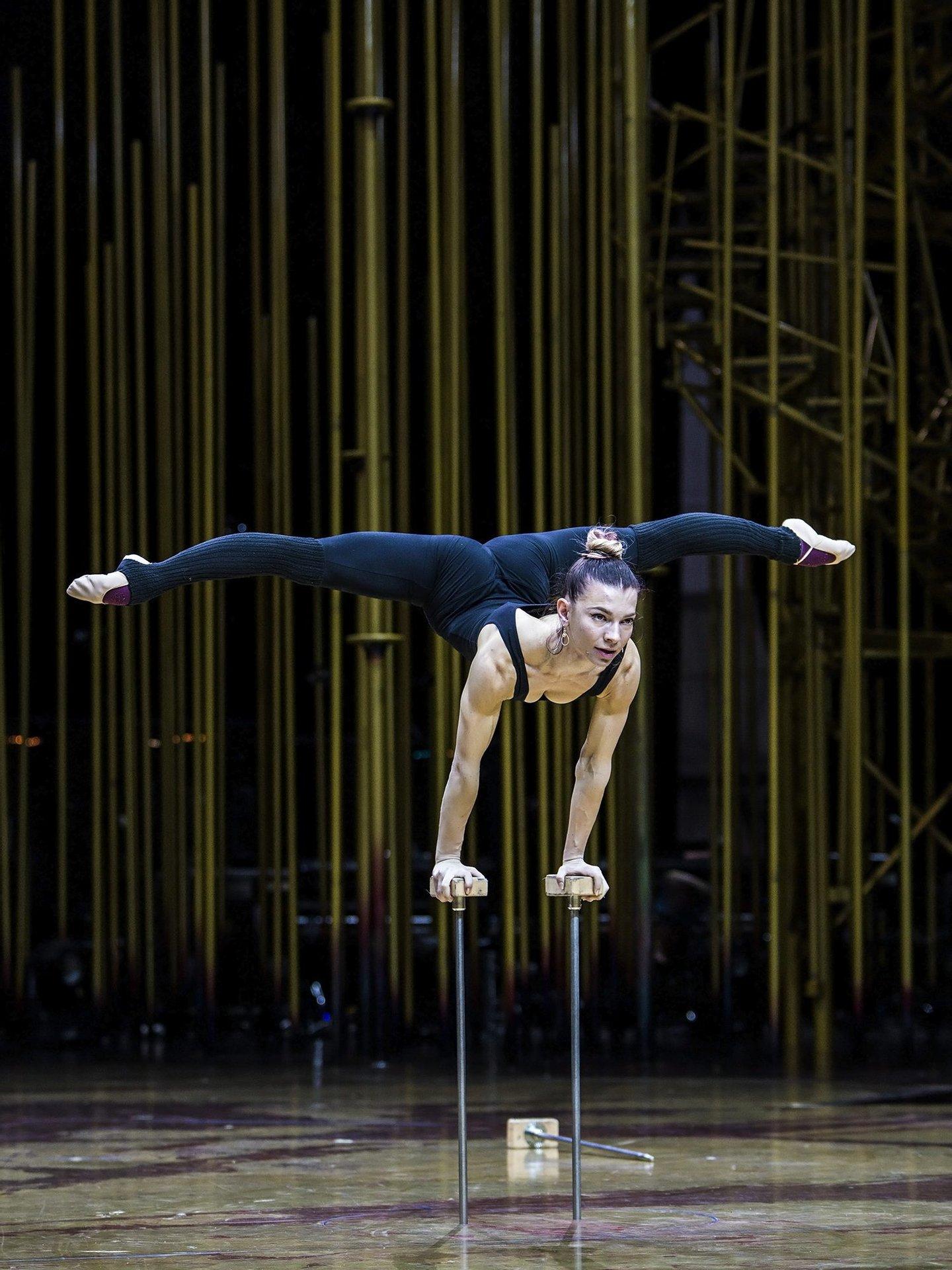 varekai, cirque du soleil,