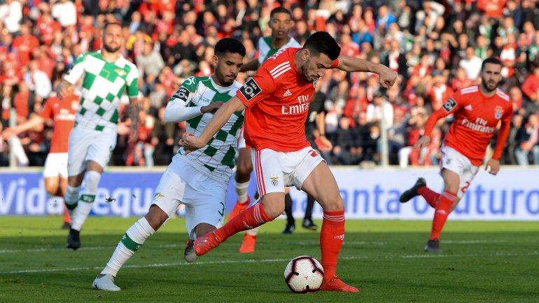 2cab61d3608db Benfica goleia Moreirense e segura liderança com os mesmos pontos do FC  Porto (0-4) - como aconteceu