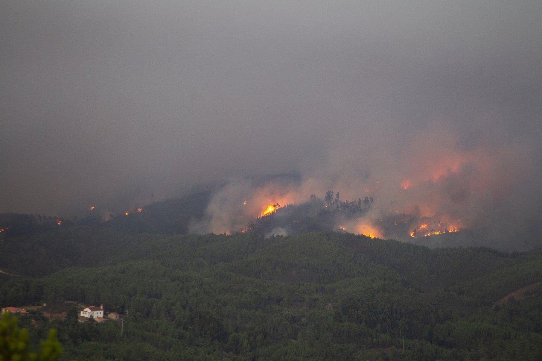 Αποτέλεσμα εικόνας για portugal fires