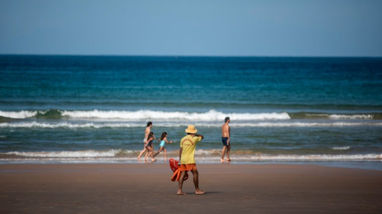 Researchers detect pathogenic bacteria in waters of bathing beaches of the...