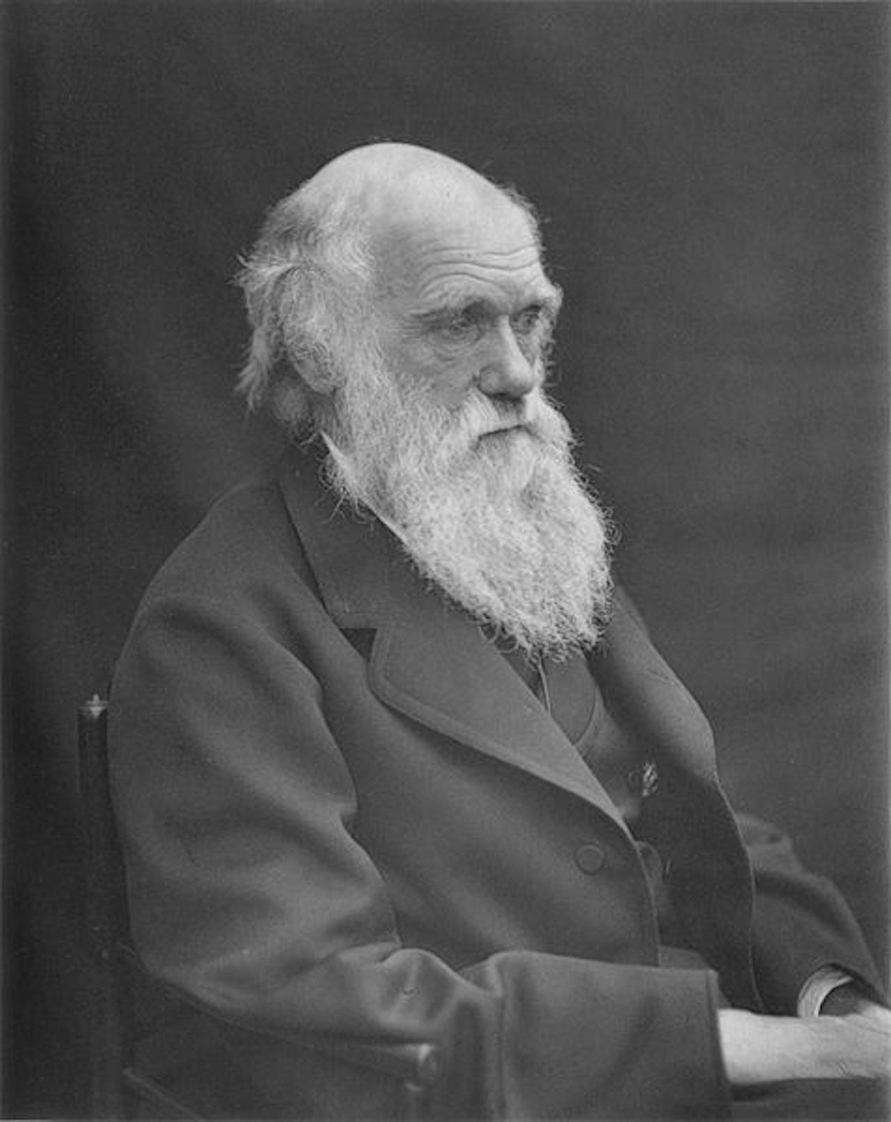 476px-1878_darwin_photo_by_leonard_from_