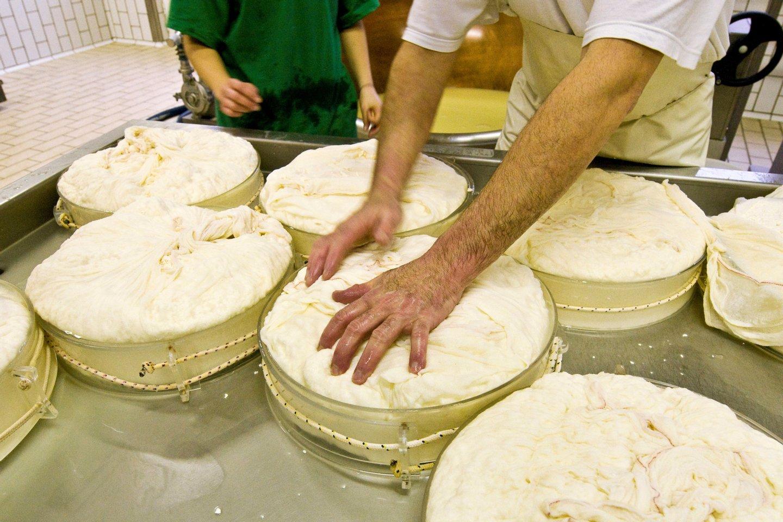 Italy. Aosta Valley. Aosta. Fontina Cheese Making