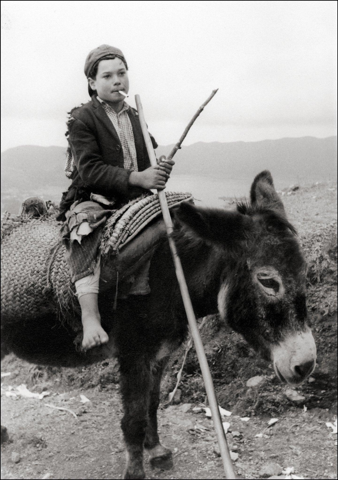 Smoking On His Donkey